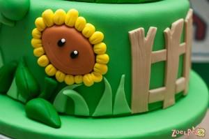 closeup cake